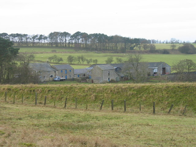 Low Chesterhope Farm