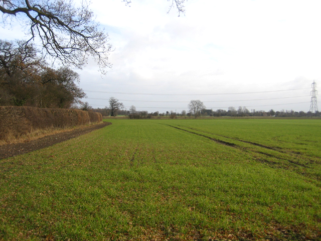 Farmland, Edworth, Beds