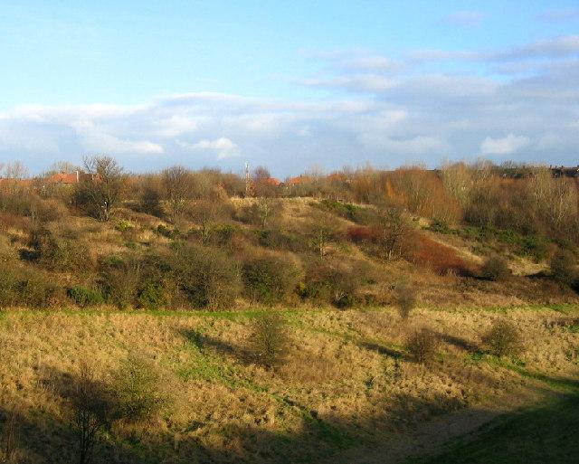 Wallsend 'Park'
