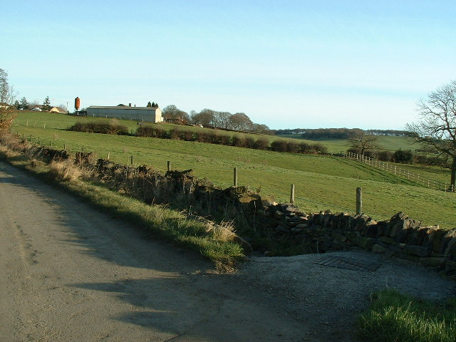 Looking along Pond Lane from Little Lepton