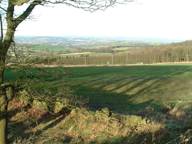 From the edge of Low Wood towards the A642
