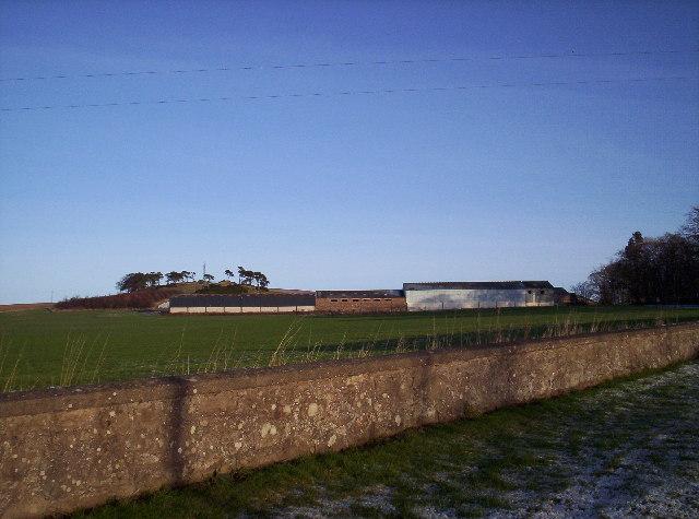 Morphie Farm