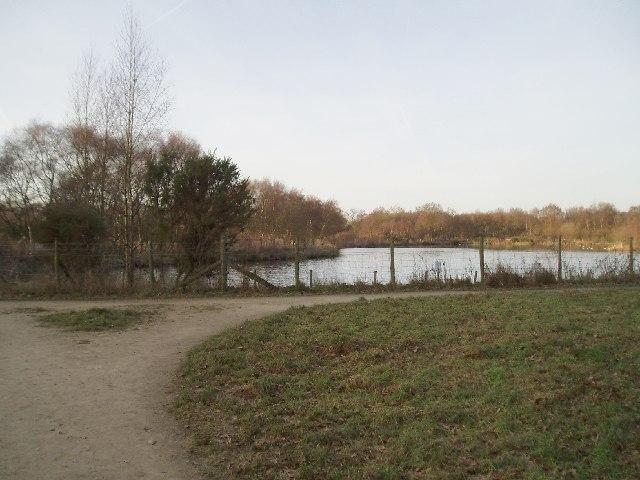 Black Lake, Lindow Common.