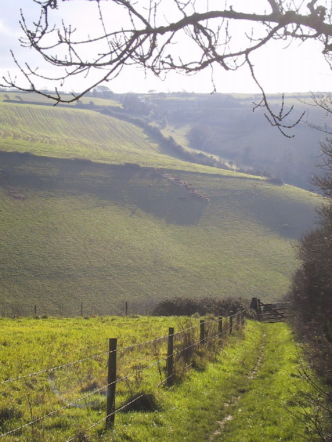 Valley above Stiddicombe Creek