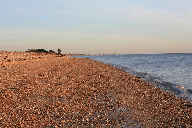 Shoreline south of Hook Park, Fareham
