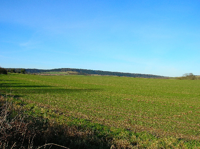 Farmland near Lavant