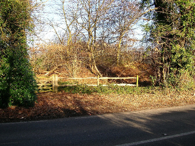 Earthworks, The Broyle, near Chichester