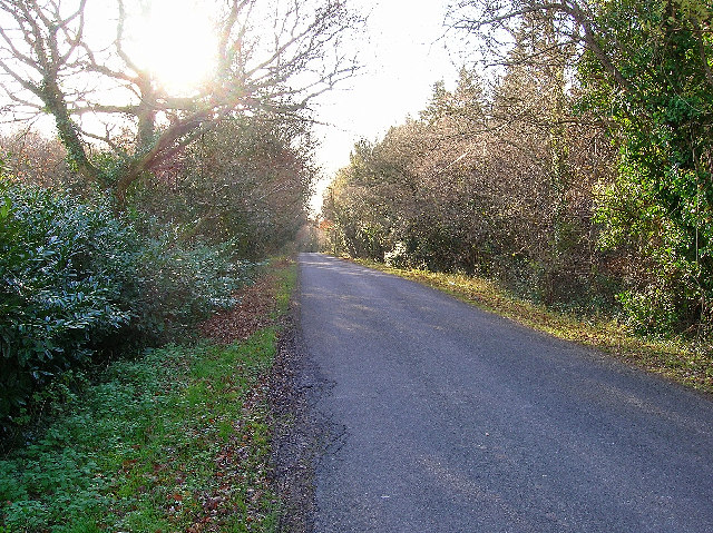 Mouthey's Lane