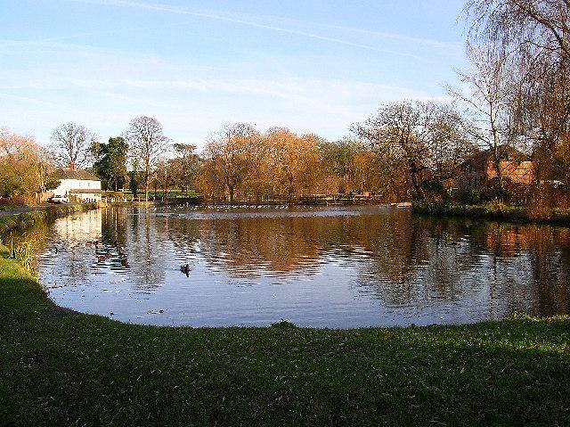 West Ashling mill pond