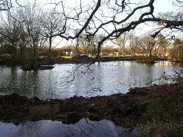 Pond, Newells Lane