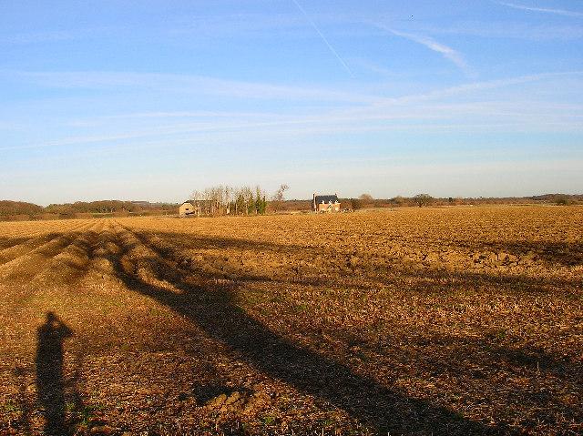 Mudberry Farm
