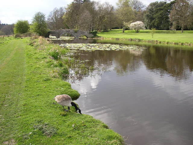 Lake, Waverley Abbey House, Farnham
