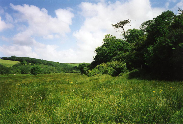 Cuby: the Fal valley near Tregony