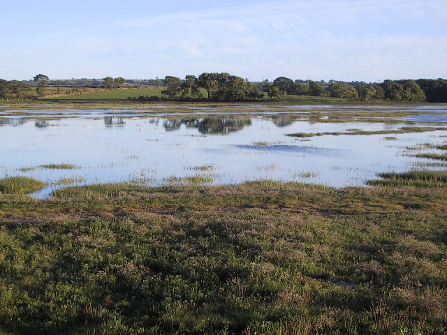 Saltmarsh at Tything Barn