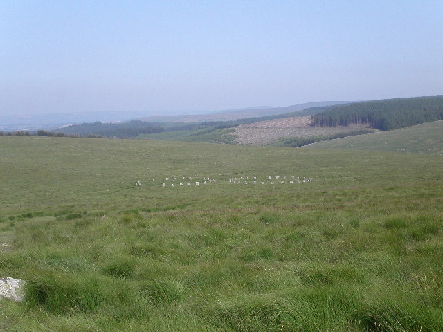 Grey Wether stone circles