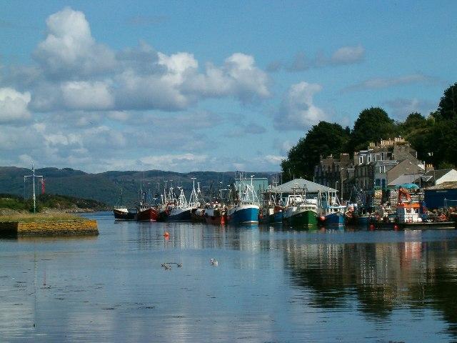 Fishing Fleet in Port, Tarbert, Loch Fyne