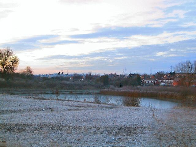 Reeds Wood Pond