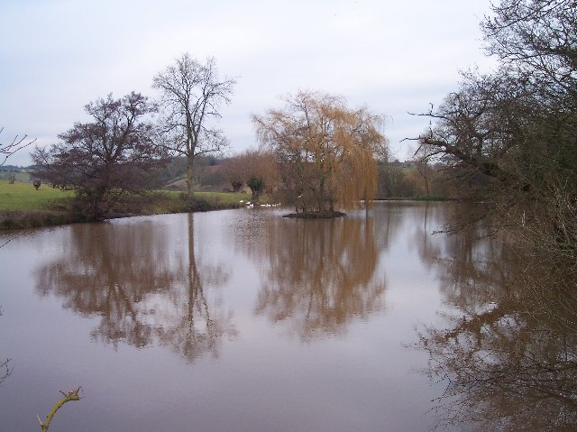 Old Mill Pond, Pauntley Court