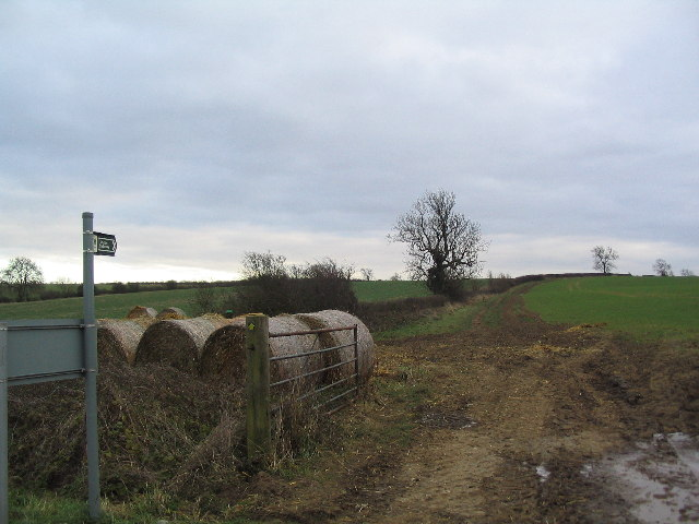 Rutland Round south of Whissendine