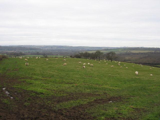 View from near Todenham