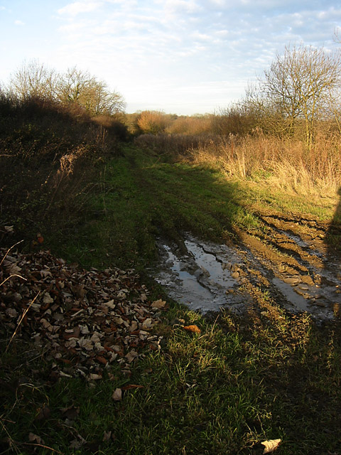 Farm Track near Long Clawson