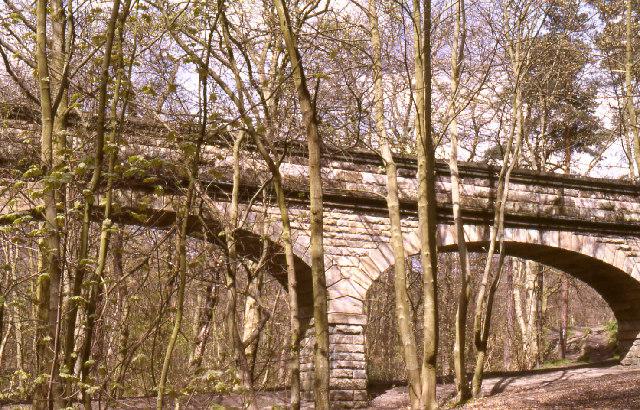 Seven Arches Aqueduct, Adel Woods