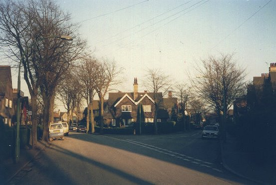 Lilac Avenue Garden Village, Hull