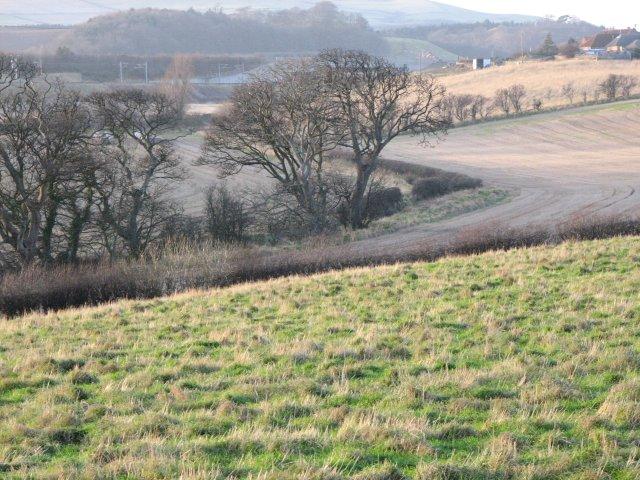 Fields near Cove