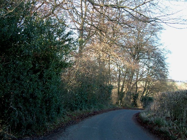 Smalldean lane at the top of Bradenham Wood