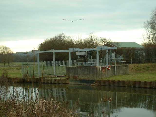 Hardham pumping station with Geese flying south