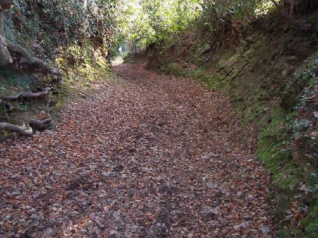 Sluvad Track, Pontypool, Monmouthshire