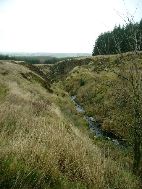 The Munzie Burn in Whitelee Forest