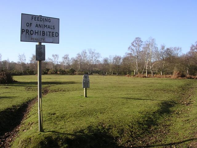 Feeding Of Animals Prohibited on Cadnam Common