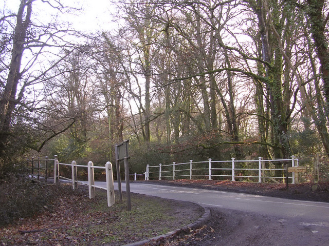 The bridge at Wittensford, New Forest