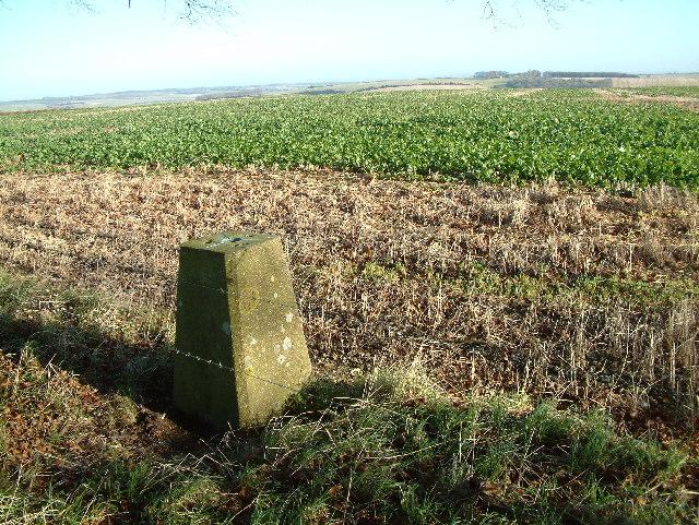 Triangulation Pillar, Knowle Hill, Wiltshire