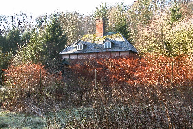 Abandoned cottage in woodland above Checkley