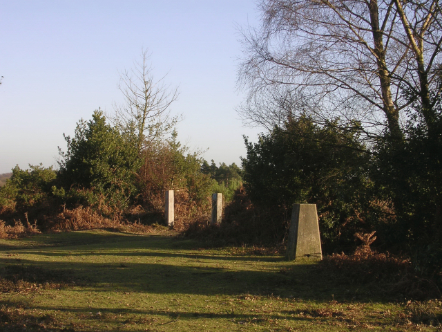 Trig point on Hart Hill, New Forest