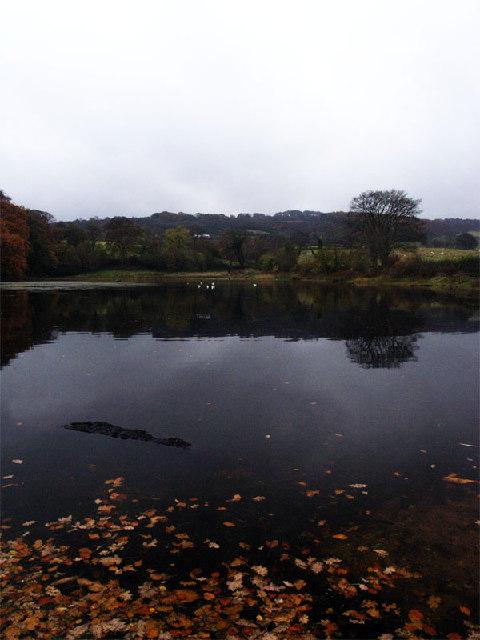 Lake by Sled Lane