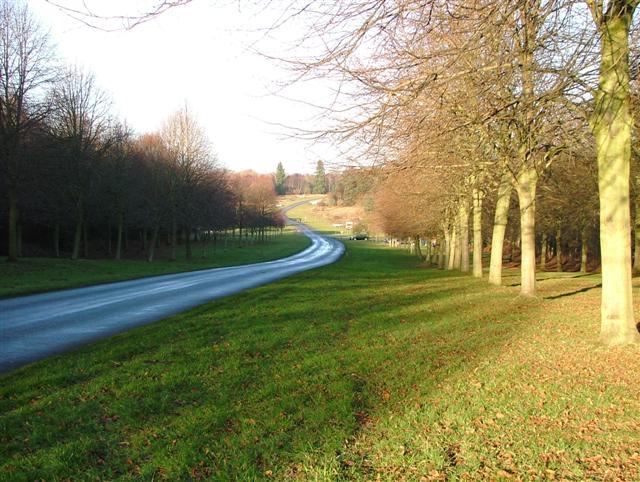 View North Along the Carburton Road