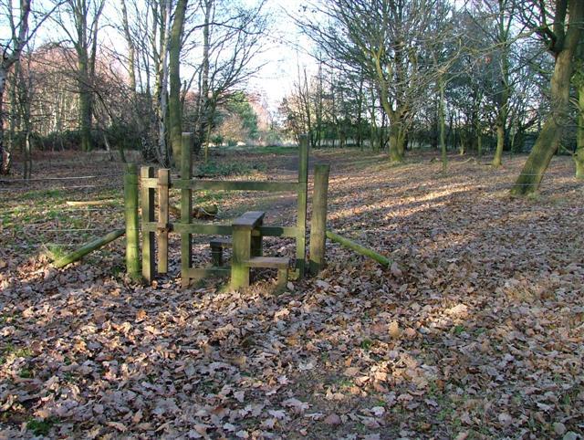 Stile On Footpath North to Tank Wood