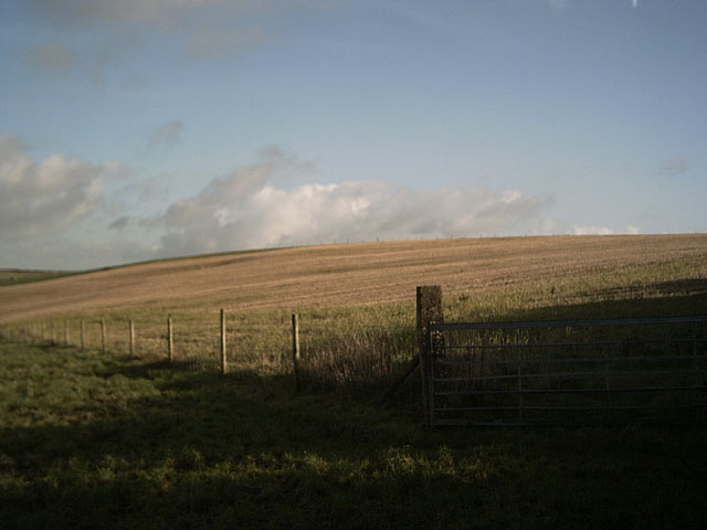Farmland on Halsinger Down