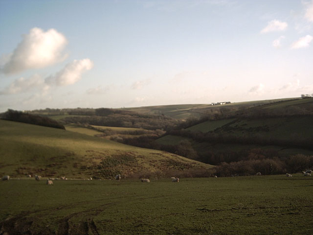 Farmland near Beara