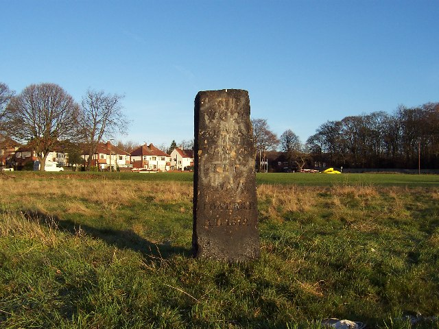 Standing Stone, Carr Manor Field