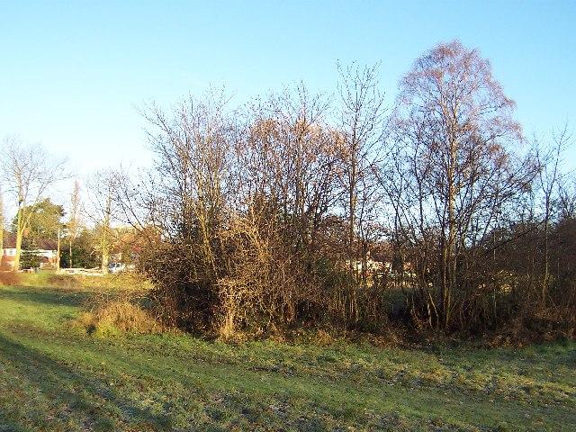 Mound, Carr Manor Field