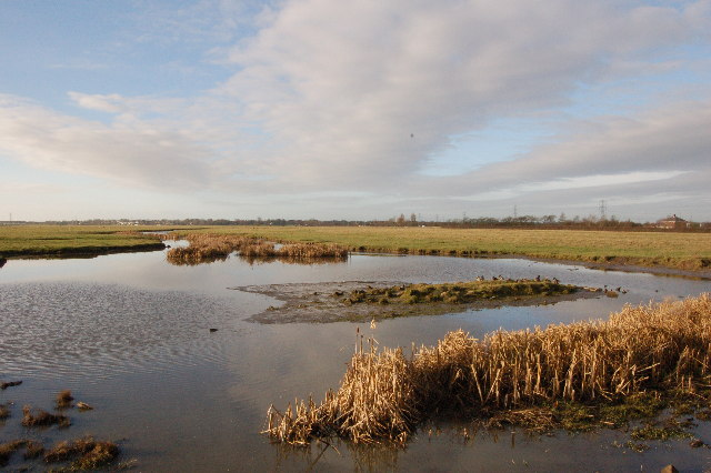 Freckleton Marsh, off the road to the sewage works looking west