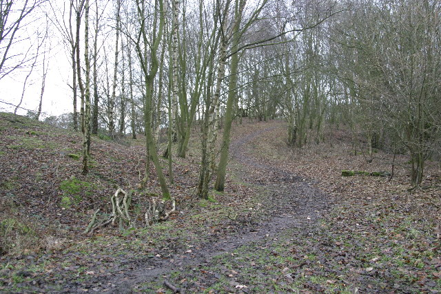 Remains of the spoil heap of the Havannah Drift Colliery