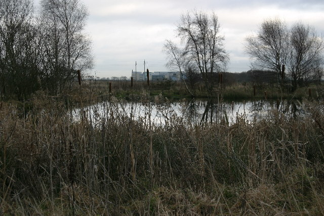 Subsidence pond on the site of Havannah Drift Colliery.