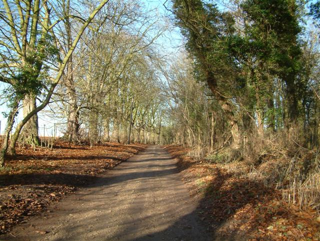 The Bridleway to Chalgrove