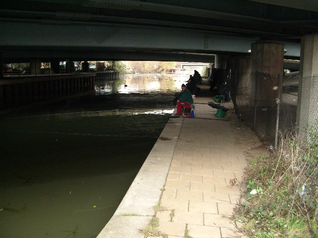 Anglers Under the North Circular