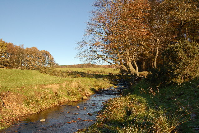 Grizedale Brook
